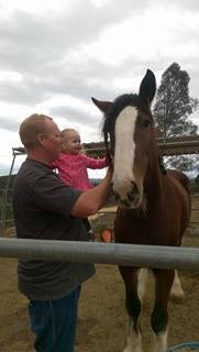 "Showing Ryder ""The Horsey"""